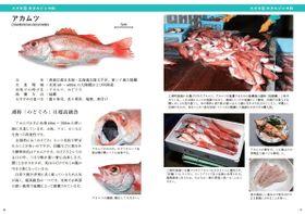 「対馬魚類図鑑」のアカムツを特集したページ(対馬市提供)