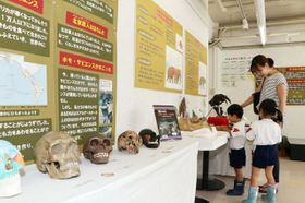 絶滅した哺乳類から地球環境を考えるアスエコの展示