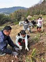ヤマザクラの苗を植樹する地元の親子連れら=三豊市詫間町、塩生山