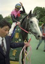 1993年11月、菊花賞を制したビワハヤヒデと岡部幸雄騎手=京都競馬場
