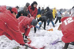 ツエーゲン金沢の躍進を願い、除雪に励むサポーター=金沢市安原スポーツ広場