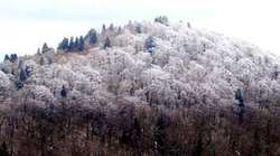 山頂付近が雪で白く染まった恐羅漢山