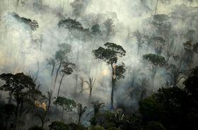ブラジル北部アマゾン地域のポルトベリョ付近の熱帯雨林で起きた火災=2019年9月(ロイター=共同)