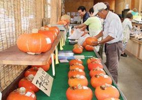 ものずき村で開かれた特産カボチャ「あかもん」の展示即売=魚沼市三渕沢