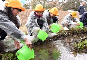 ホタルの幼虫を放流する児童たち=丸亀市垂水町、土器川生物公園
