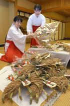 弥彦神社で準備が進む年末年始の縁起物=10日、弥彦村