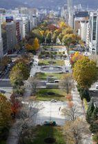 東京五輪男女マラソンの発着点となる札幌市の大通公園
