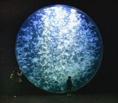 大水槽には数え切れないミズクラゲがゆったり泳ぐ