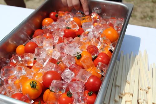 夏の食卓に欠かせないトマト=写真提供・大柴由紀さん
