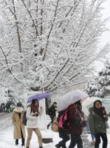 雪が積もった山形市の山形大小白川キャンパスを歩く学生ら=12日午後
