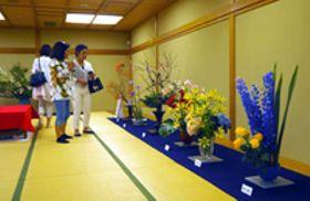 女性華道家75人、初夏の情趣 京都でいけばな展