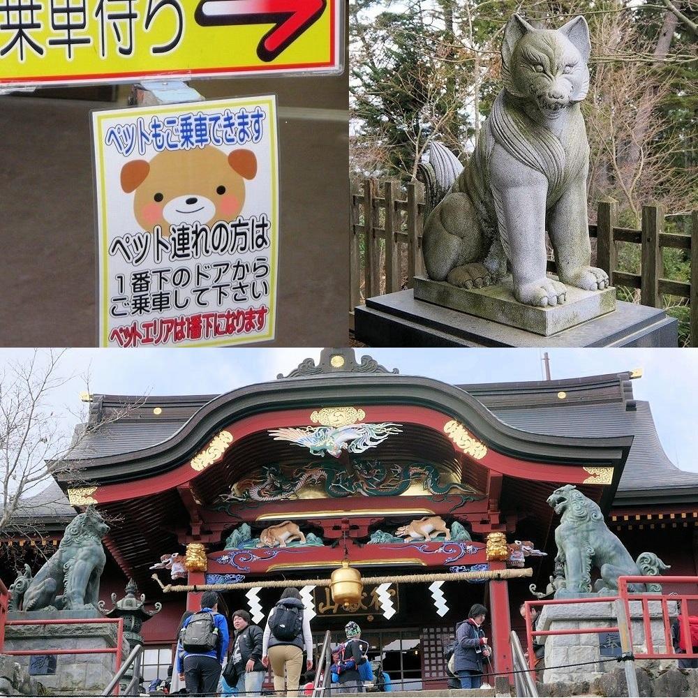 滝本駅のペット乗車可の表示(左上)、大口真神社の精悍な狛犬(右上)、武蔵御嶽神社の拝殿(下)