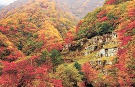 【壮麗】鮮やかな紅葉にうずもれるようにたたずむ選鉱場跡。最盛期の釜石鉱山では3000人以上が働いていた=2017年10月27日、岩手県釜石市甲子町