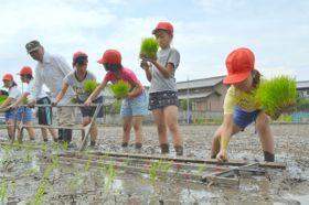 昔ながらの田植えに挑戦する川添小の児童=高松市東山崎町