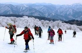 三ノ丸山頂周辺の大雪原を歩く。樹氷が満開の桜のように輝き、春の公園のよう=宍粟市波賀町