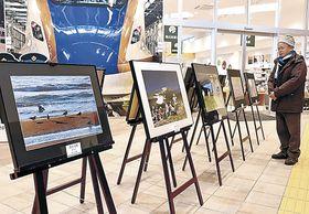 四季折々の写真に見入る来場者=白山市宮丸町の道の駅「めぐみ白山」