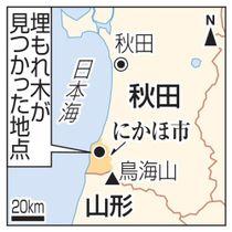 秋田県にかほ市・埋もれ木が見つかった地点