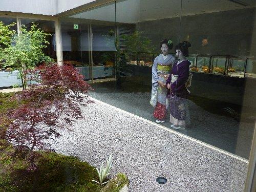 ■ガラス張りの中庭に見入る舞妓さん