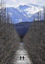 【LOOK!新百景】安達太良連山...今だけの『ハートマーク』