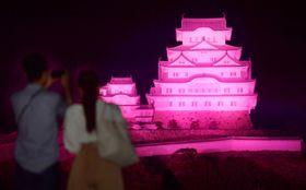 乳がん月間が始まり、ピンク色にライトアップされた姫路城=1日夜、兵庫県姫路市
