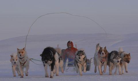 氷点下41度の世界(2013年2~3月)
