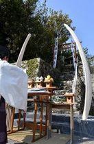 建て替えられたクジラの骨の鳥居(19日、和歌山県太地町で)