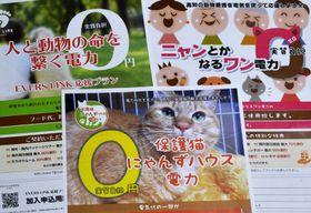 犬猫保護活動の資金源として県内3組織が取り組むことになった「応援電力」のチラシ