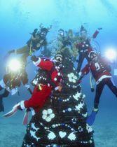 サンタクロースの衣装を着て、水中ツリーの周りでクリスマスを楽しむダイバーたち=15日午後、静岡県伊東市の伊豆海洋公園