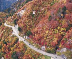 山肌が赤や黄色に染まった白山白川郷ホワイトロード=18日、小型無人機「ドローン」で撮影