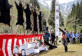 マタギの里として知られる山形県小国町で開かれた「小玉川熊まつり」=4日