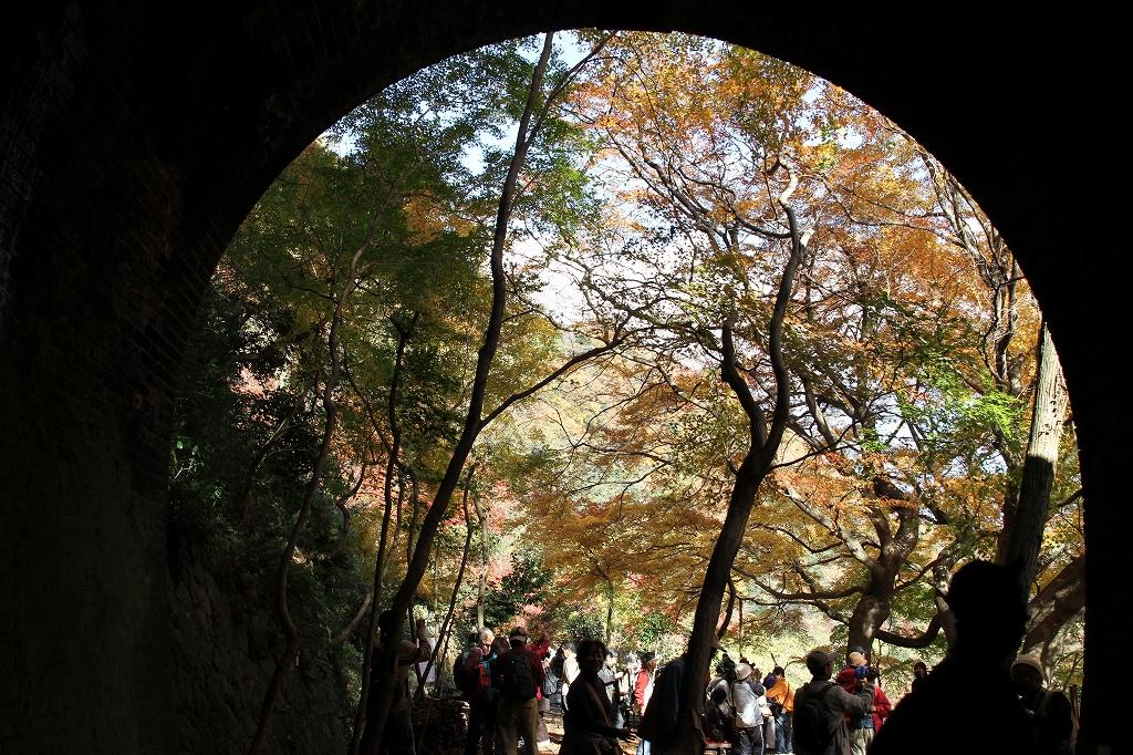 紅葉を楽しめる穴場スポットとして多くの人でにぎわう秋の一般公開(愛岐トンネル群保存再生委員会提供)