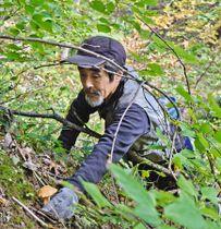 出荷制限や自粛のかかっていない山でキノコを採る木村隆一さん=山形市蔵王で