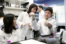 京都大iPS細胞研究所で実験を体験する高校生ら=17日午後、京都市