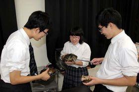 捕獲したカメを観察する福貞さん(中)たち