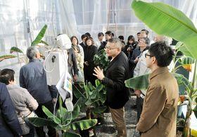 栽培作物の概要を説明する加藤准教授(中央)
