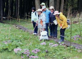 昨年の自然観察会の様子(NPO法人「猪の瀬戸湿原保全の会」提供)