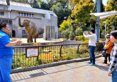 アフリカゾウの人工哺育のエピソードなどを披露した飼育員(左)