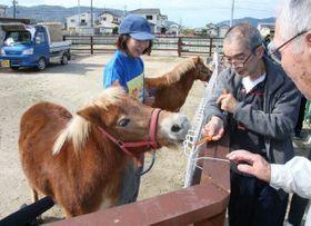 豪雨後、牧場に戻り施設利用者と触れ合うリーフ(手前)=昨年11月1日