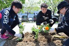 花の苗を植える選手たち