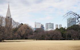 環境省が外国人観光客を増やす取り組みを強化する新宿御苑。奥は新宿や代々木の超高層ビル=1月25日