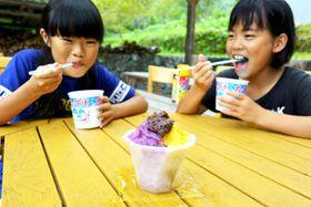 優しい甘さの安納芋と紫芋のかき氷(佐川町の集落活動センター「たいこ岩」)