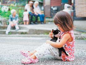 子どもの膝の上でくつろぐ深島の猫=佐伯市