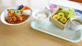 19日から発売される三ノ倉菜の花シューマイ定食(右)と改良が加えられた日中ダムカレー