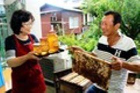 和木産の蜂蜜いかが 山口