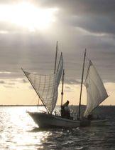 白い帆を張り、ホッカイエビ漁をする打瀬船=22日午前、北海道・野付湾