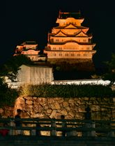 「世界アルツハイマーデー」でオレンジ色にライトアップされた世界遺産で国宝の姫路城=21日夜、兵庫県姫路市