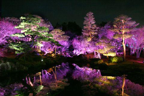 ライトアップされ、幻想的に浮かび上がった日本庭園「由志園」の園内=9日夜、松江市