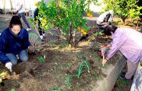 住民とボランティアが協力して整備した仮設住宅前の花壇