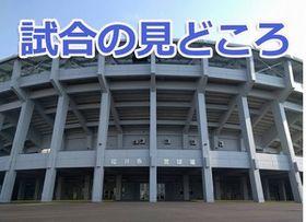 第140回北信越地区高校野球福井県大会の見どころ