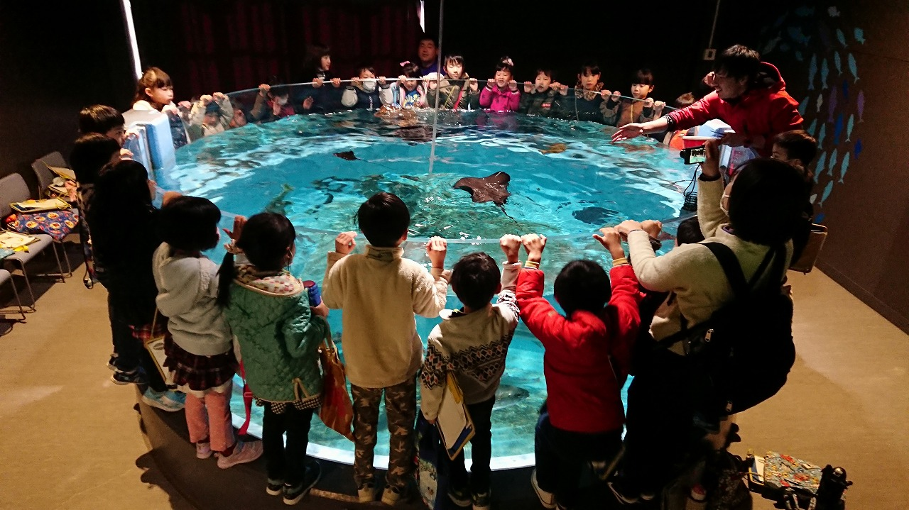 工夫を重ねた展示に家族連れら多くの入場客でにぎわう=2019年1月(むろと廃校水族館提供)